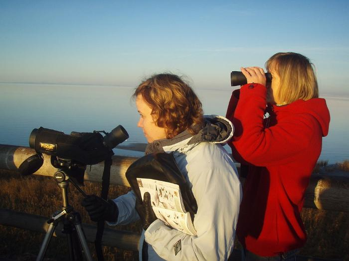 Bird-watching with 'Seikle Vabaks'