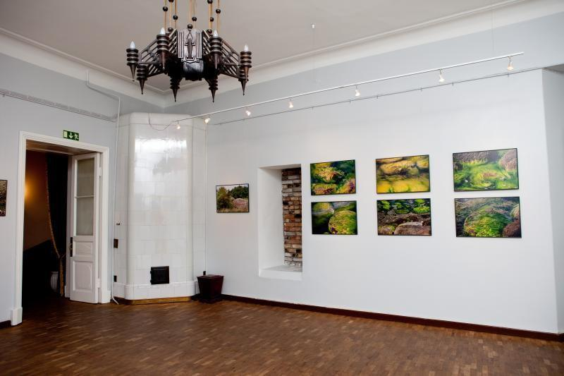 Tallinn Teachers' House Gallery