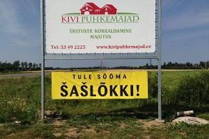Kivi Holiday Houses