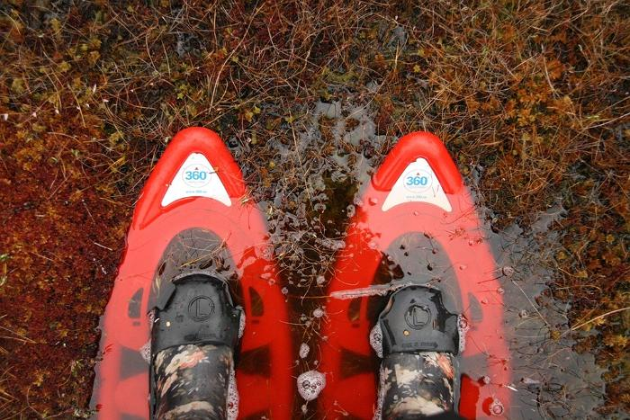 Snowshoe hikes in the Marimetsa bog