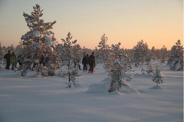 Snowshoeing in Sirtsi mire in Alutaguse
