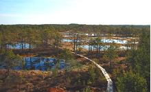 Viru Bog study trail