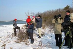 In winter the aim of the tour is to watch seals