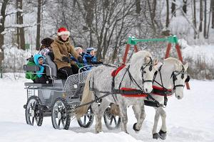 Sleigh and sled rides in Harju County