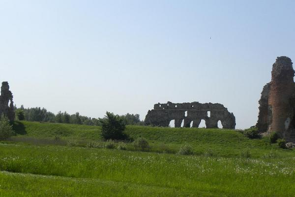 Laiuse fortress ruins