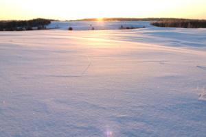Sunrise and sunset hikes in Kõrvemaa!