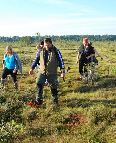 3 reasons to come to Estonia for bogshoeing