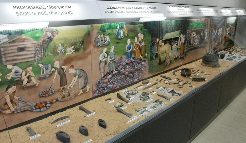 Prehistory hall in the permanent exhibition