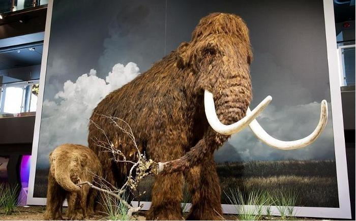 Could we be in for another ice age?