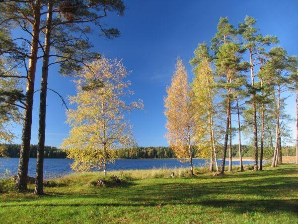 Lake Ähijärv in Autumn