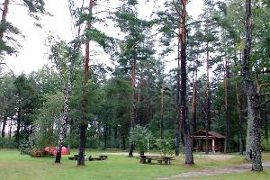 Camping site and shelter (for 50 people) at the holiday village of Voosemetsa farm