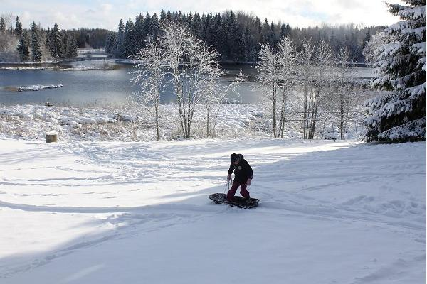 You can go sledging on our farm.