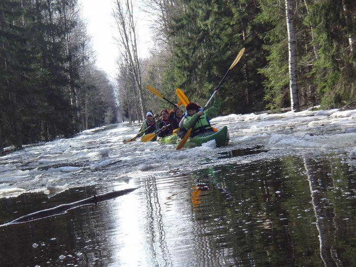 A kayak tour in Soomaa during high water.
