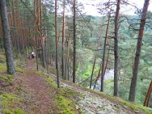 Hiking trail in the primeval valley of the Piusa River