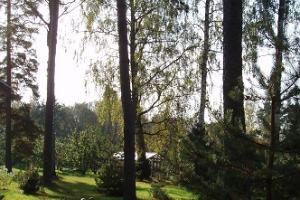 Holiday at Voosemetsa Tourism Farm and campsite