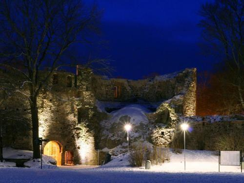 Castle in the winter
