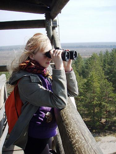 Bird-watching from a bog tower