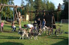 Fun rides with Siberian huskies