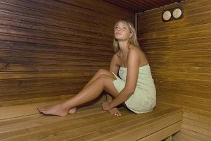 sauna_SPA_Viiking