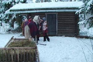 Harnessing a horse in front of a sleigh