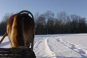 Sleigh and sledge rides in Rapla County