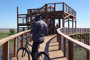 Pärnu coastal meadow hiking trail is accessible with a bicycle and a pram