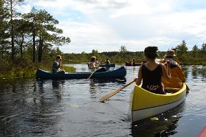 Viruna Farm canoe and bog hike in high moor