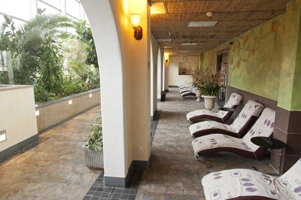 Wellness-Zentrum Orchidee des Toila SPA Hotels