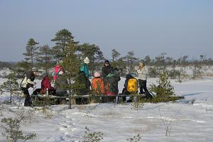 A hike in the bog during winter