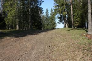Tehvandi Jogging and Nordic Walking Track