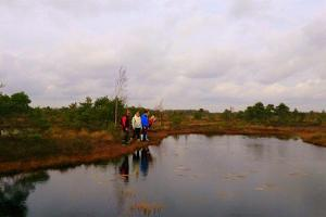 A safari and bogshoe hike in Kakerdaja bog