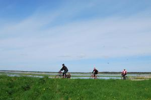 Discover Pärnu County on a bicycle: Tour of Valgeranna, Audru and Lavassaare