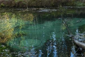 Blue Springs of Saula, sacrifical springs