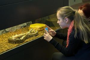 Live animals at the University of Tartu Natural History Museum.