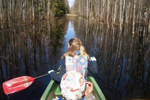 Fifth season canoeing trip in Soomaa