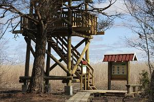 Observation tower in Silma Nature Reserve