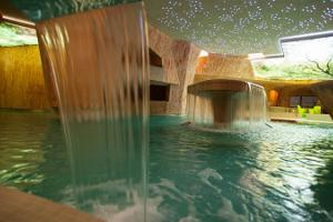 Viiking Saaga Water and Sauna Centre at the Spa-Hotel Viiking