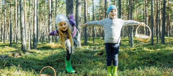 Best hiking trails for children