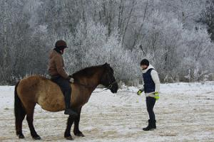 Horse riding at Karl-Eriku Riding Farm