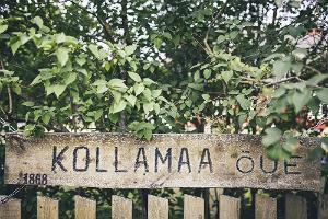 Kollamaa Holiday Home