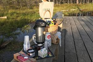 Picnic at bog trail