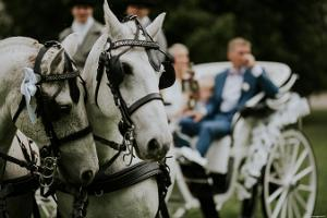 Voore Stables – carriage rides, wedding rides, sledge rides