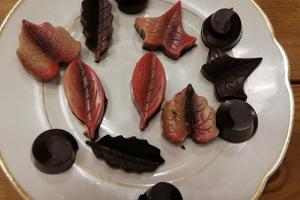 Raw chocolate workshop