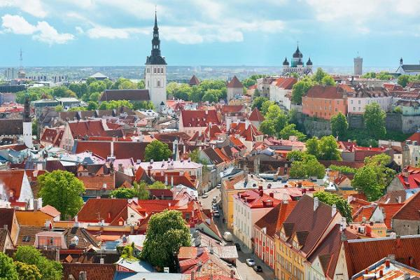 Tallinn Old Town Walking Tour & Round-Trip Port Transfer