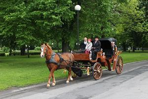 Riding in a carriage or a cart in the centre of Tallinn