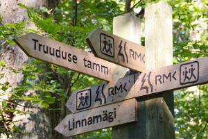 An exciting school day tour of Alatskivi, Alatskivi hiking trail