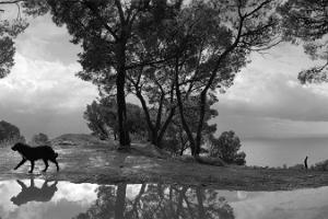 Photografer Pentti Sammallahti Exhibition Distant Land