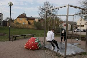 Strawberries in Viljandi
