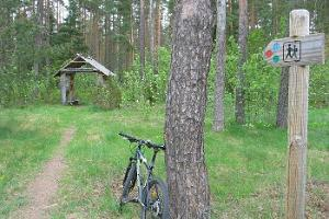RMK Laiksaare Forest Study Trail