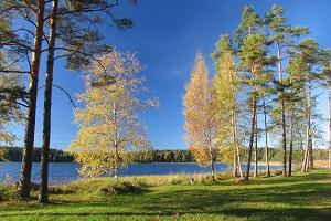 Lake Ähijärv in the autumn